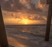 Sunrise by Cynthia Broomfield