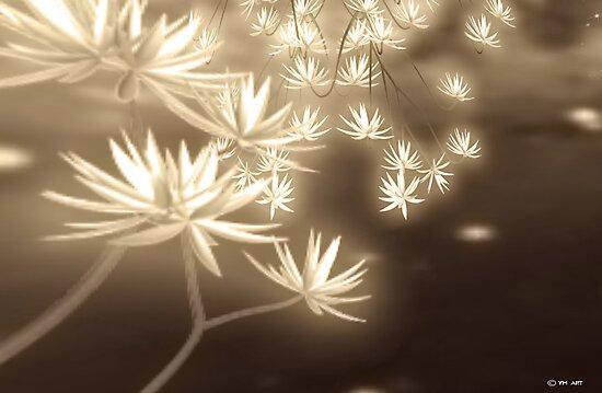 Flower_01  by Yvon van der Wijk