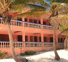 Old Pink Tropical Hotel on the Beach  by Roupen  Baker
