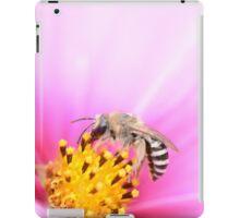 Colletes iPad Case/Skin