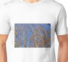 Autumn trees and Blue sky Unisex T-Shirt