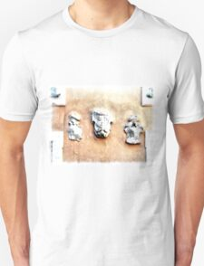 Castel Gandolfo: Papal palace, crests on the wall T-Shirt