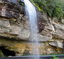 Bridal Veil Falls by Jean Gregory  Evans
