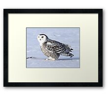 A time to be so small Framed Print