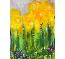 Daffodils. 30 x 40. Acrylic on Canvas. Photographic Print