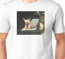 BUTTON SOAKING UP THE SUN IN THE DOORWAY Unisex T-Shirt