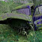 Errie Chevy  by John  Kapusta