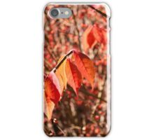 Red Leaves and Berries iPhone Case/Skin