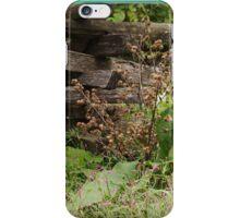 iPhone case Landis Valley Museum Fences 2 iPhone Case/Skin