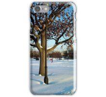 A winter scene iPhone Case/Skin