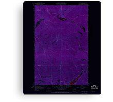 USGS Topo Map Washington State WA Aladdin Mtn 239766 1967 24000 Inverted Canvas Print