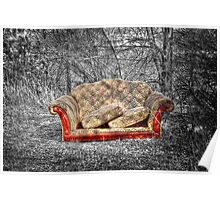 A Couch Poster