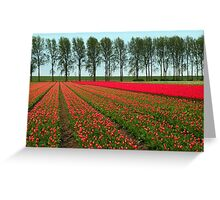 Tulip Landscape Greeting Card