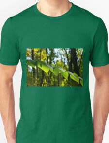 Selective focus on the branch of a tree with large green leaves T-Shirt