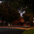 Yarragon Road by Joan Wild