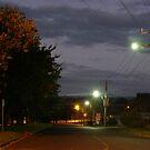 Side Road by Joan Wild