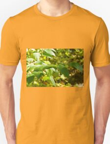 Selective focus on the branch of a tree closeup T-Shirt