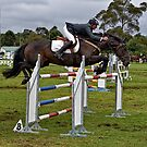 Show Jumper by Ian English