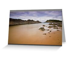Forster Rocks Greeting Card