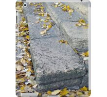 Side view of the steps of the old gray stone blocks iPad Case/Skin