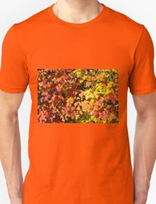 Background of bright red maple leaves T-Shirt