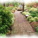 Down  The Garden  Path  by fiat777