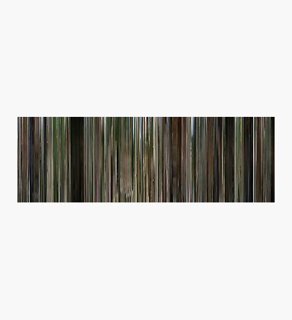 Moviebarcode: The Station Agent (2003) Photographic Print