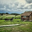 Adeline Hornbeck Homestead, Florissant Fossil Beds NM by Gregory Ballos | gregoryballosphoto.com