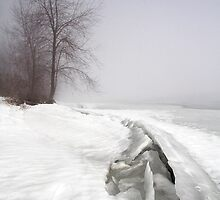 Breakup, Ottawa River, Dunrobin Ontario by Debbie Pinard