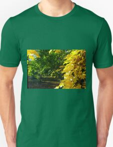 Maple branches in the foreground and blurred background T-Shirt