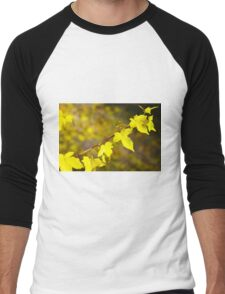 Little branch of maple with yellow leaves close up Men's Baseball ¾ T-Shirt
