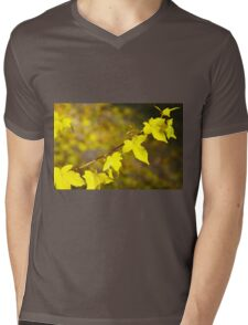 Little branch of maple with yellow leaves close up Mens V-Neck T-Shirt
