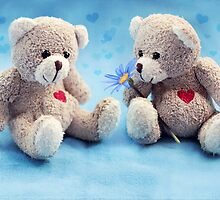 Teddy Love by micklyn