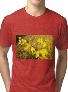 Little branch of maple with small yellow leaves close-up Tri-blend T-Shirt