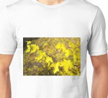 Little branch of maple with small yellow leaves close-up Unisex T-Shirt