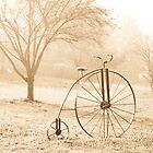 ANTIQUE BICYCLE by Pauline Evans