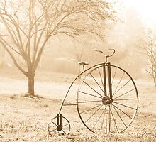 ANTIQUE BICYCLE by Pauline Evans