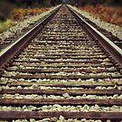 Ghost tracks by Kingstonshots