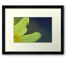 The critter and its flower Framed Print