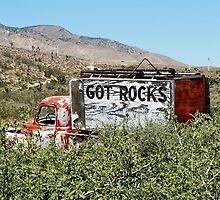 Got Rocks? by Martha Sherman