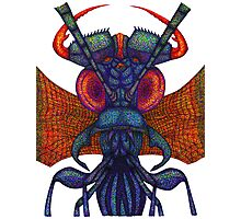 Insect alien Photographic Print