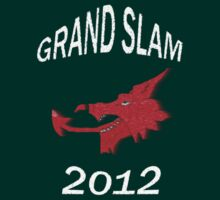 Wales Grand Slam 2012 by sjbaldwin
