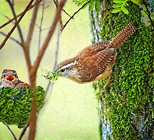 Mama's Spring Chick by Bonnie T.  Barry