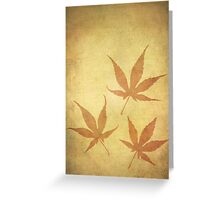 Japanese Maple Leafs Greeting Card