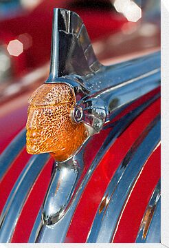 1951 Pontiac Chief Hood Ornament by Jill Reger