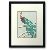 winter christmas peacock Framed Print
