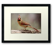 I see you... Framed Print