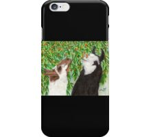 Llamas Eating Apricots Cathy Peek Farm Animal Art iPhone Case/Skin