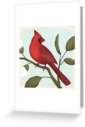 an american red cardinal by Maria Khersonets