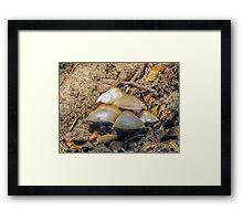 Shroon On A Hill Framed Print